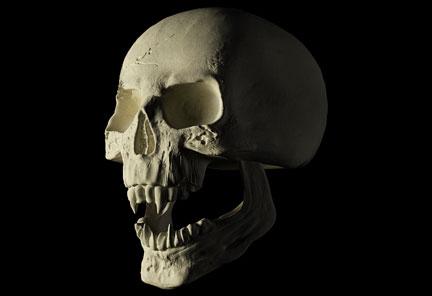 skull_tutorial