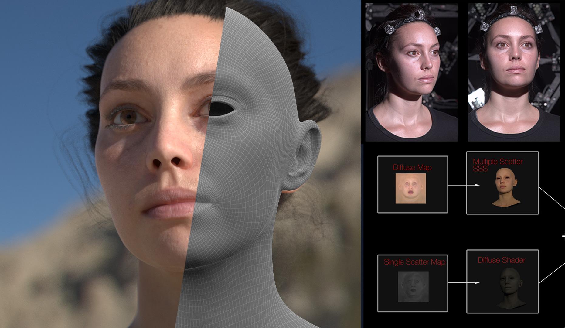 Download Free Human Head Model Texture Map