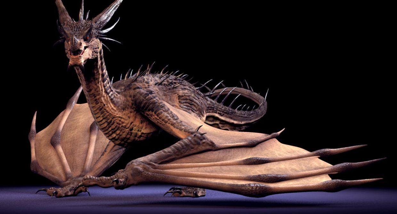 Free-Dragon-Rig-setup