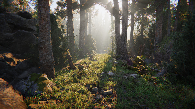 Download free assets from Unity | 3DArt